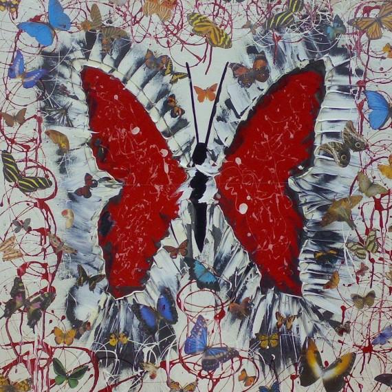 Farfalle di Sonnino