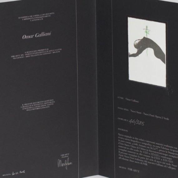OPERA VERDE 2 - Omar Galliani